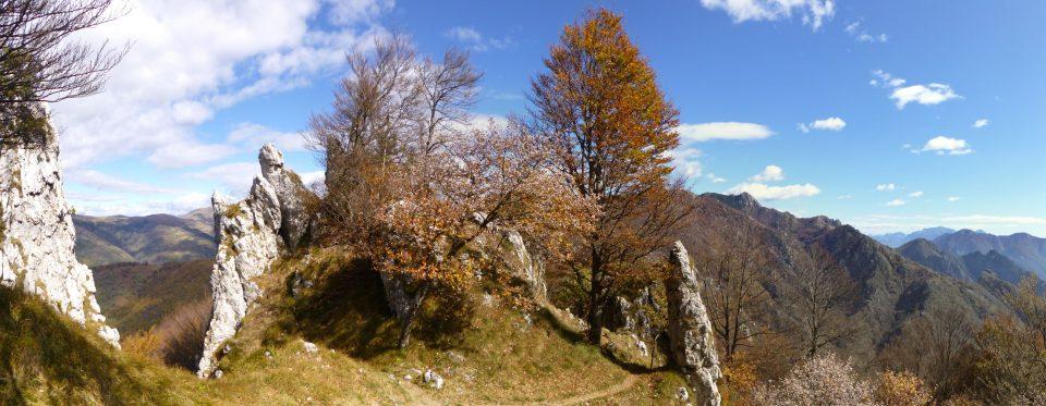 Alberi in livrea autunnale tra pinnacoli di rocce bianche