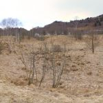 Piana con erba secca e terrazzi fluviali