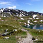 Laghetto alpino tra pascoli versi, ai piedi di monti rocciosi