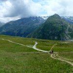 Altopiano erboso , sullo sfondo una cresta di monti