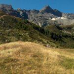 Pascolo erboso in primo piano, cresta rocciosa sullo sfondo